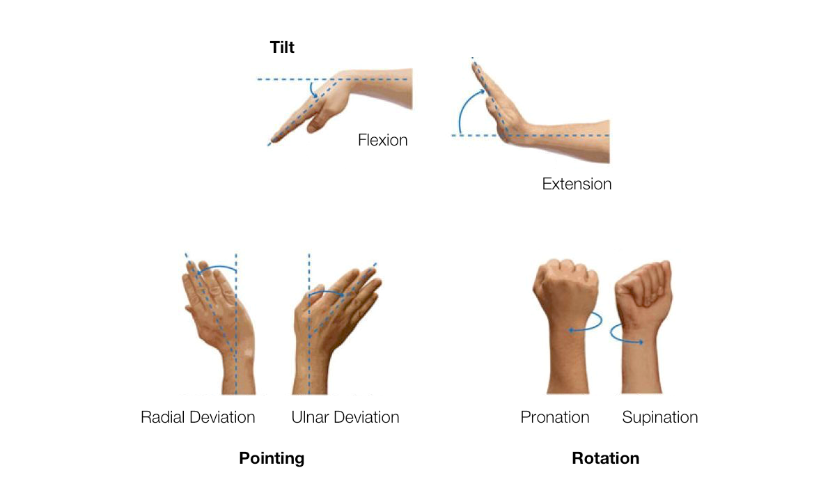 The wrist is capable of three sets of distinct movements: flexion and extension, radial deviation and ulnar deviation, pronation and supination.